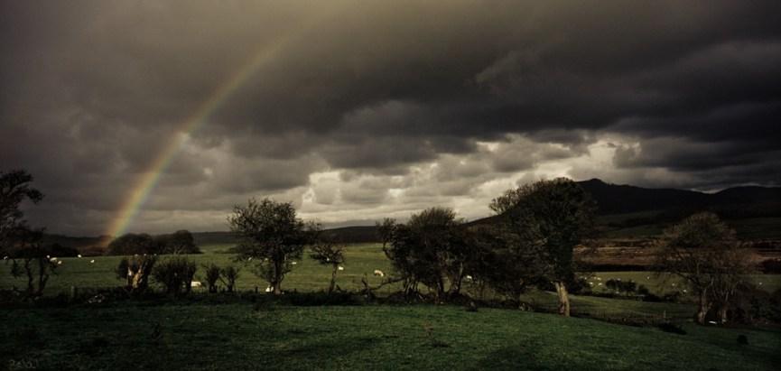 rainbow-1024x486