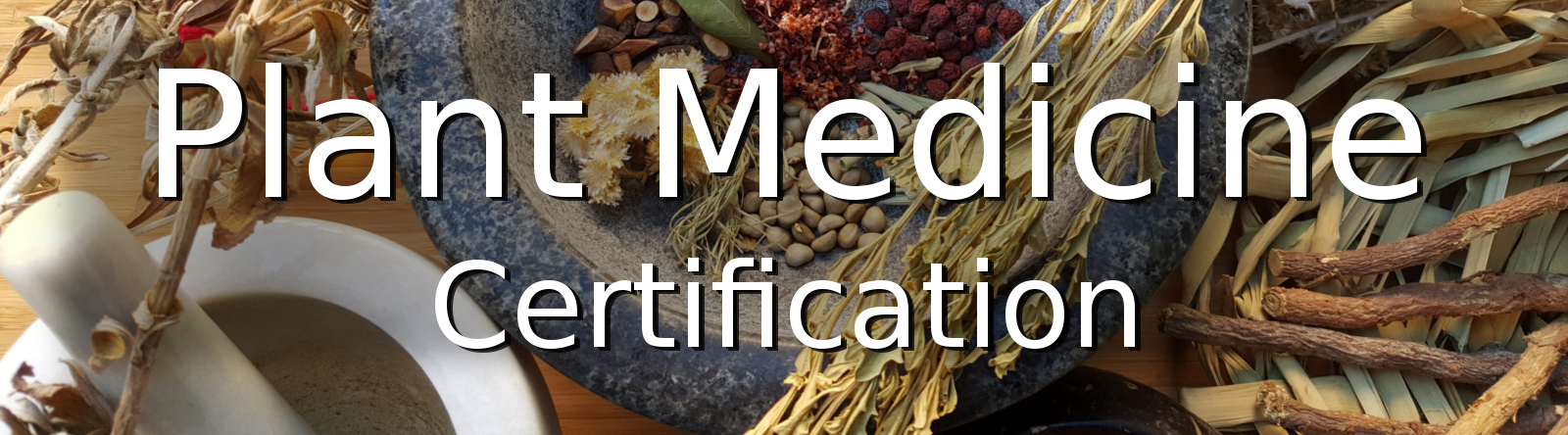 Plant Medicine Certification