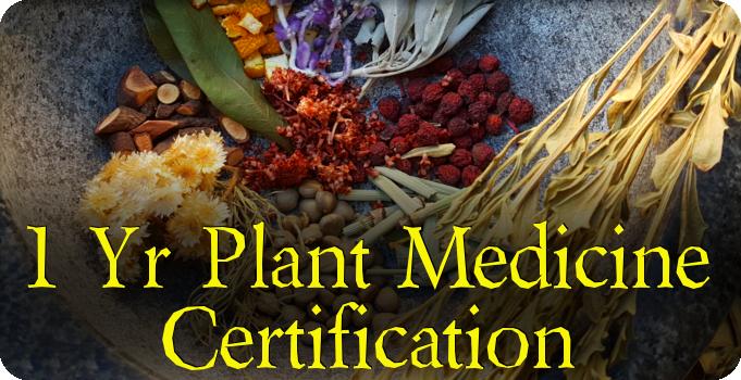 Plant Medicine Certification Program